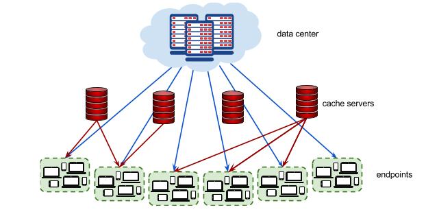 server_organisation