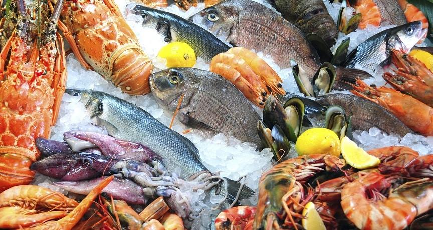 Nederlandse en Belgische visverwerkende industrie worden steeds afhankelijker van internationale handel